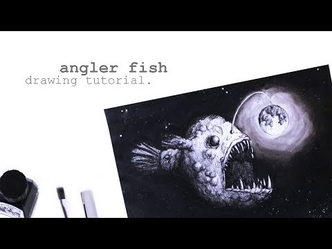 "Drawing Process ""Anglerfish"""