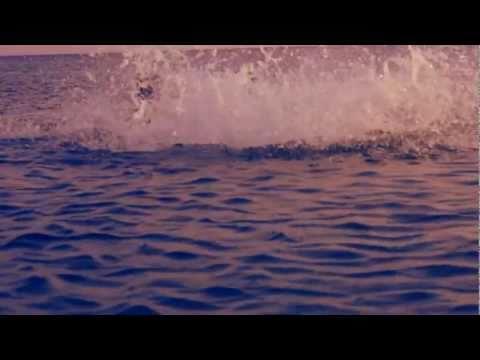 thetrip:diary – sea