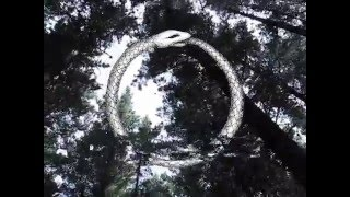Skymning - Stuck in a Rut