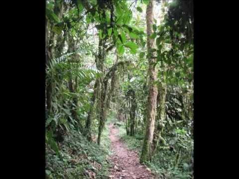 Vegi Ventures trip to Ecuador 2012 part II fin