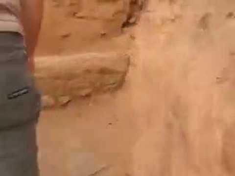 Les dioub's au vieux KSAR (Taghit) part 02