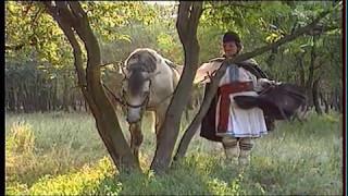 Liviu Vasilică — Fir-ai tu să fii de murg © 🇲🇩 🇺🇸 🇷🇺 🇪🇦 🇱🇺 🇼🇫 🇸🇯 🇨🇭 🇪🇺