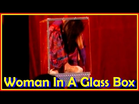 Absolutely Flexible  Flexiladies  Present  Insane  Art Of Contortion Such As Woman In A Glass Box
