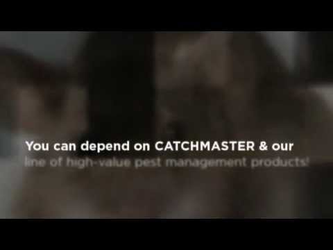 CatchMaster - How To Catch A Mouse