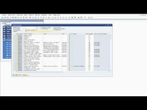 Řízení projektů a zakázek pro SAP Business One - Moje projekty