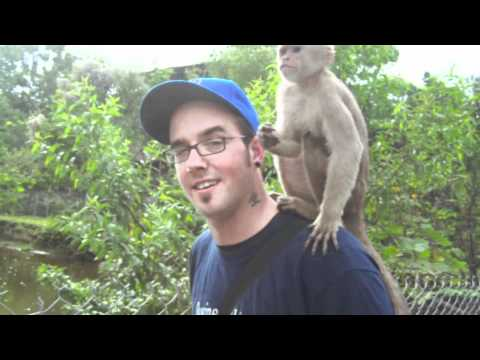 Nick with a Monkey on his Back