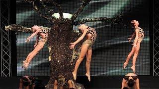 Murrieta Dance Project - Hanging Tree