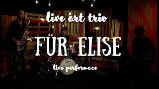 Live ART trio - Für Elise