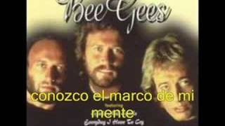 Bee Gees - To Love Somebody (traducido)