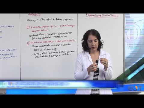 Elit Eğitim Biyoloji Dersi - Hayatın Başlangıcı ve Evrim Demosudur