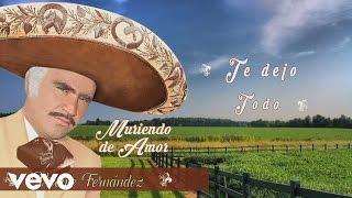 Vicente Fernández - Te Dejo Todo (Cover Audio)