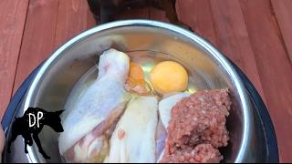 Raw feeding Doberman   Chicken - Ground Beef - Eggs