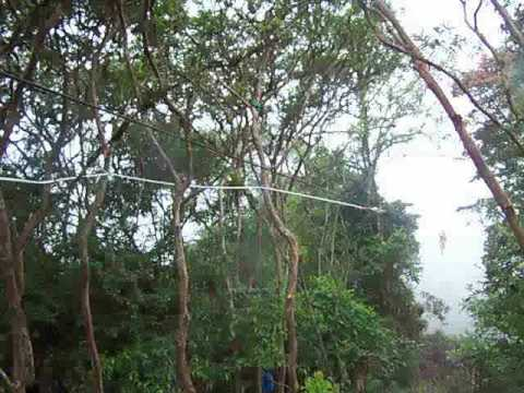 Fausto's Zipline Landing in Mindo, Ecuador