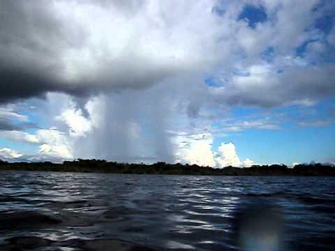 Ecuador Amazon Troz in lake.avi