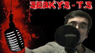 Sebkys ► T.S ( Letra )