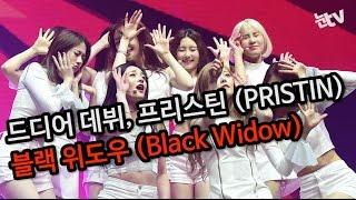 [눈TV]PRISTIN(프리스틴) - Black Widow(블랙 위도우) 쇼케이스 무대 (20170323, 한전아트센터)