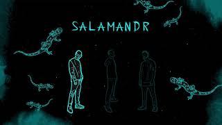 Frank Wild, Meth, DO - Salamandr (prod. Bondyfan)