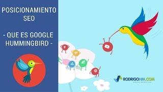 Que es Google HummingBird - Como Funciona - Posicionamiento SEO