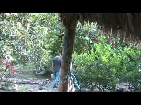 Ecuador Spring 2010 (part 1)