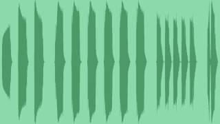 Phone Vibration Sound Effects