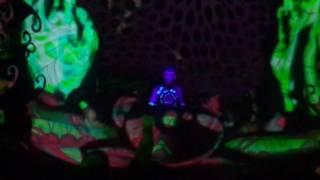 Space Tribe - Sonoora 2017