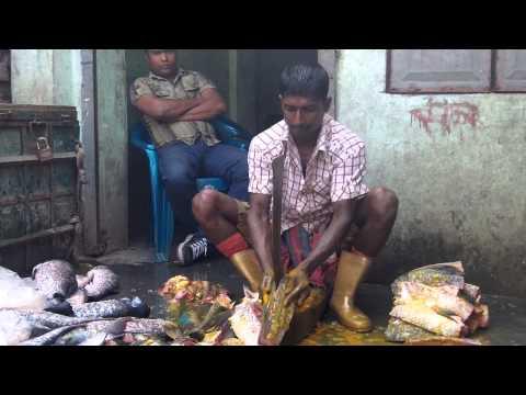 i passed a Fishmarket on the rails in village , (majbari District) Bangladesh  2 of 3