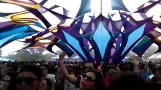 [1] Tristan @Rounders Festival 2015 Awake Of Shiva By MoonCrystal Live Guadalajara México.