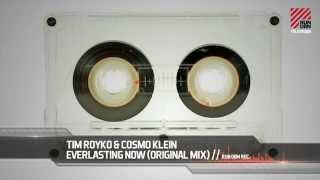 Tim Royko & Cosmo Klein - Everlasting Now (Original Mix)