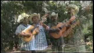 """dueto los armadillos  """"mi primavera"""""""
