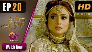 Drama | Is Chand Pe Dagh Nahin - Episode 20 | Aplus ᴴᴰ Dramas | Zarnish Khan, Firdous Jamal width=