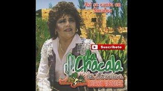 La Chacala de Sinaloa - Maquina 501