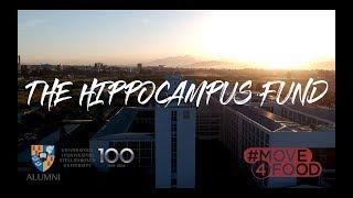 The Hippocampus Fund