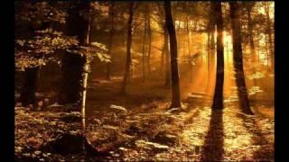 Gregorian Chants - Amazing Grace (**Beautiful Christian song & music**)