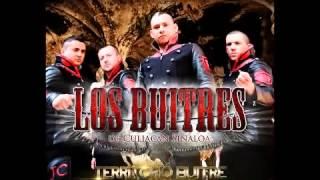 Los Buitres De Culiacan  'Vuelo Ala Hilacha' Territorio Buitre 2014