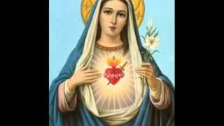 Maria Celeste & Carlos Ribeiro   Virgem Santa Mae de Deus