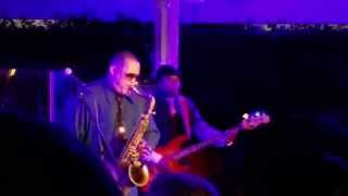 Najee-Fly With The Wind (Live 8/7/2015)
