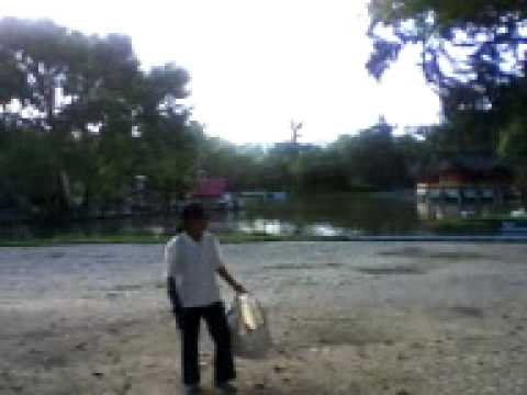 Parque Jipiro – Loja