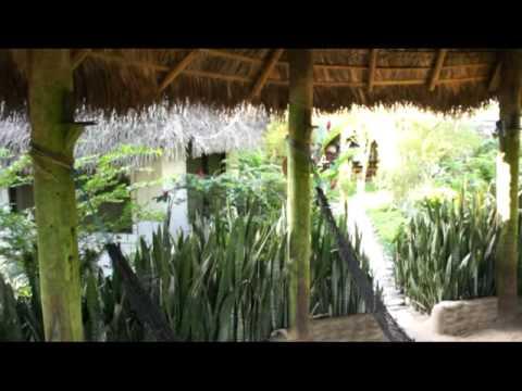 """""""France Amazonia"""" guest house – casa de huéspedes – maison d'hôtes – pensjonat, Misahualli"""