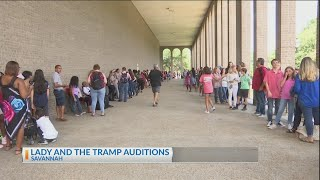 Thousands audition for Lady and the Tramp , filming in Savannah