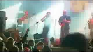 Kult - Po co wolnosc (live)