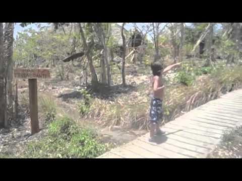 Ometepe Island, Nicaragua – Family Travel