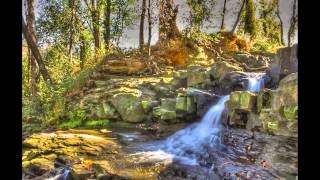 "The most beautiful classical music ""Waterfall Prelude"" by David Bagno"