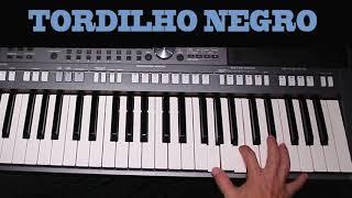 VÍDEO AULA - TORDILHO NEGRO