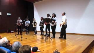 """""""Fui um dia para a cidade"""" Grupo Concertinas Sem Eira Nem Beira"""