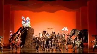 """""""O Rei Leão"""": da Broadway para São Paulo"""