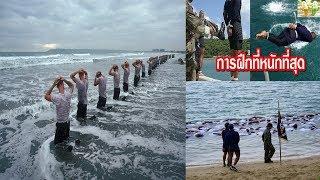 Seal หน่วยซีลมนุษย์กบ!!!!การฝึกหลักสูตรนักทำลายใต้น้ำจู่โจม