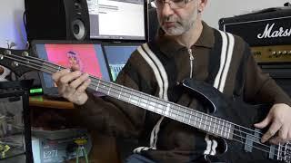 Pollon bass cover