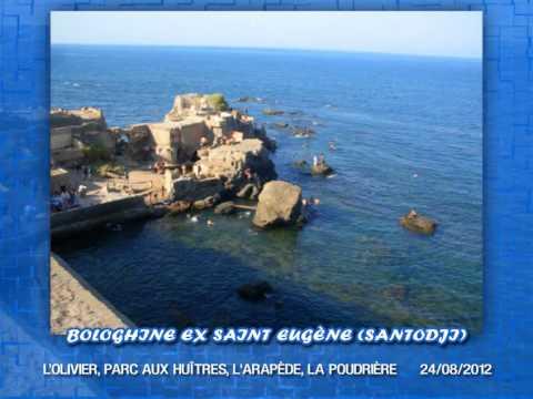 L'OLIVIER, Parc aux huîtres, l'Arapède, La Poudrière, Santodji, Bologhine, Alger, Algérie 2012