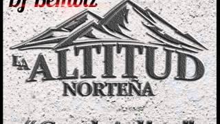 La Altitud Norteña - Cual Adios | 2016