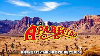 Grupo Aparecido- La Chuyita  [EN VIVO 2017]